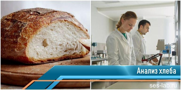 проверка хлеба