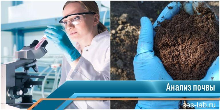 экспертиза почвы