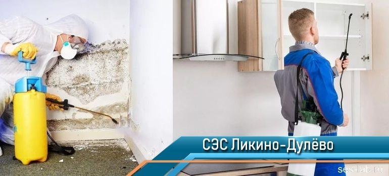 Санитарно-эпидемиологическая служба Ликино-Дулёво