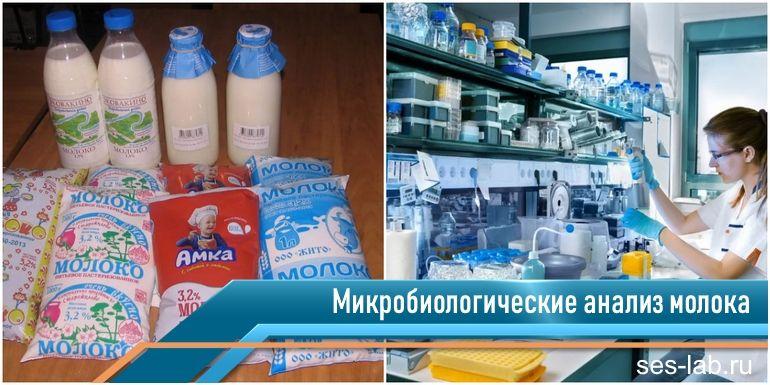 микробиологические анализ молока