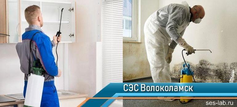 Санитарно-эпидемиологическая служба Волоколамск