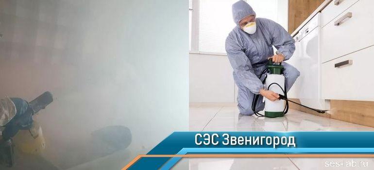 Санитарно-эпидемиологическая служба Звенигород